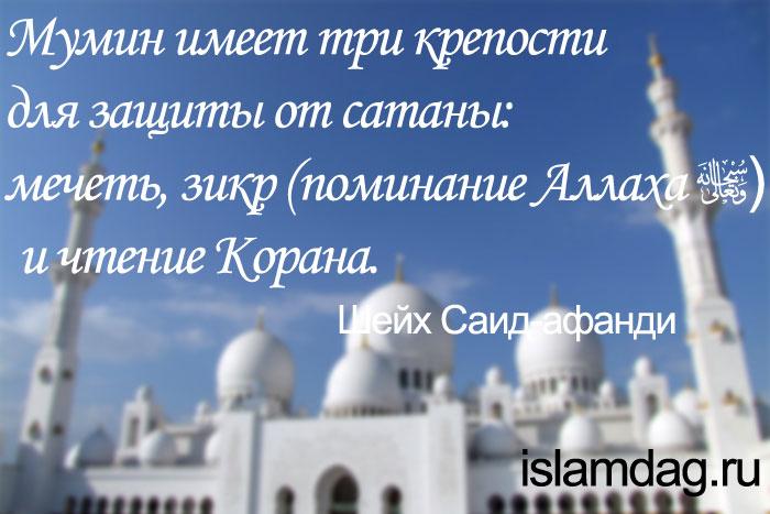 Высказывания шейха Саида-афанди